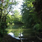 The Lake at Stansted  by lizzyforrester