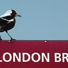 Magpie on London Bridge by Roz McQuillan