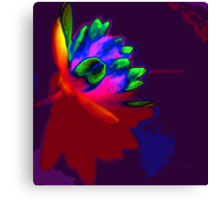 Water lily abstract pop art Canvas Print