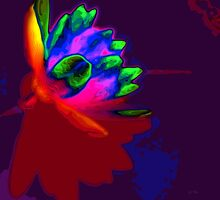 Water lily abstract pop art by Eti Reid