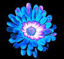 Blue Essence by whittyart