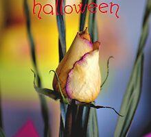 HAPPY HALLOWEEN by Cheryl Hall