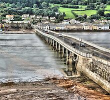 Shaldon Bridge by Catherine Hamilton-Veal  ©