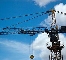 crane by bayu harsa