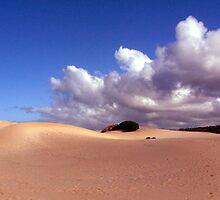 Dune by Raymond  Ah Sing