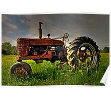 Farmall Field Of Green Poster