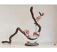 Ikebana-036 Greeting Card  by Baiko