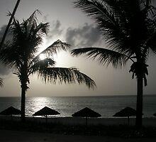 Sunset Shadows by sunsetgirl
