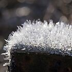 Hoar Frost on Rusted Post by Lynn Gedeon