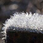 Hoar Frost on Rusted Post by Lynn Gedeon