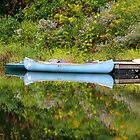 Blue Canoe by Deborah  Benoit