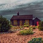 Prospect Cottage by Nigel Bangert