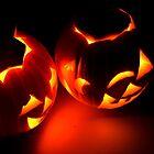 birds eye pumpkins by ANJacobsen