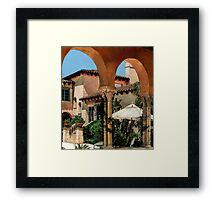 The Floridian Framed Print