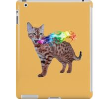 Rainbow Kitty iPad Case/Skin