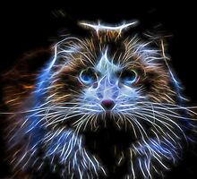 Cat Fractal by Judy Vincent