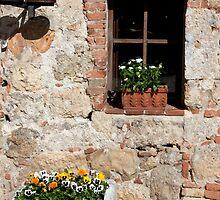 Shady Window by phil decocco