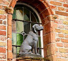 Window Watchdog by Ludwig Wagner