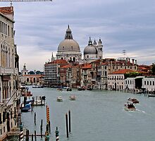The Grand Canal by Laurie Search