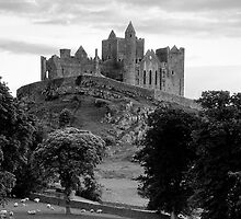 Rock Of Cashel by Michael Walsh