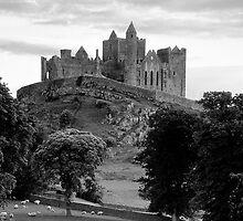 Rock Of Cashel by Michael Walsh
