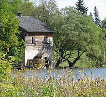Grant's Old Mill - Winnipeg by Robert Jenner