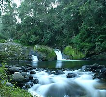 Ladies Well, Barrington Tops, NSW, Australia. by SkyPhotos