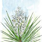 Yucca by Maree  Clarkson