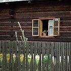 Liptov house, Pribylina, Slovakia by Lenka