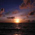 Fijian Sunrise by Natalie Broome