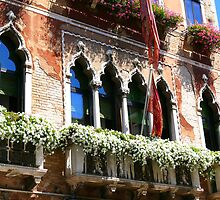 Venice window by terezadelpilar~ art & architecture