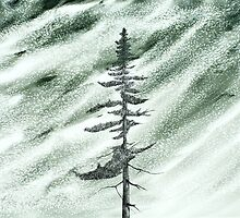 Portrait of an Evergreen in Snowstorm by David Hayward