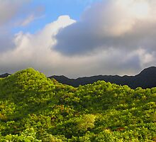 Olomana Foothill by THConway
