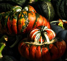 Autumn Gourds  by kelleybear
