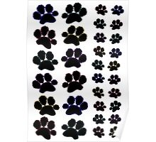 Paw Prints with Colourful Outline Poster