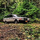 Volvo in the Woods by Bailey Sampson