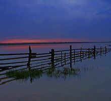 Lagoon Fence by Ray Smith