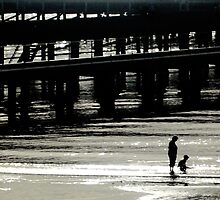 Photograph : Late afternoon, Brighton Beach by Roz McQuillan