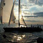 Donnybrook Solomon's Island Race 2007 by OceanBien