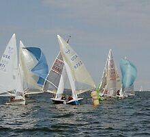 505 racing Annapolis 2006 by OceanBien