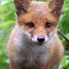 Cute red head by widge