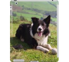 Indy: 19th March 1998 to 19th December 2011  iPad Case/Skin