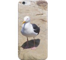 Me and My Shadow ~ La Jolla, California ~ America iPhone Case/Skin