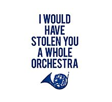 I Would Have Stolen You A Whole Orchestra Photographic Print