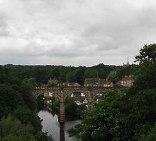 Knaresborough / River Nidd / Railway Bridge by acornandowl