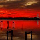 forever red  by Micki Ferguson