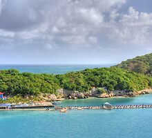 Labadee by Shelley Neff