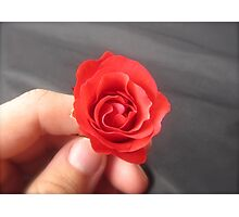 SAY IT WITH A ROSE - HAPPY VALENTINES DAY Photographic Print