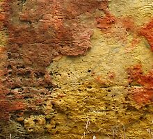 Limestone Abstract by lorilee