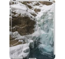 Johnston Canyon iPad Case/Skin